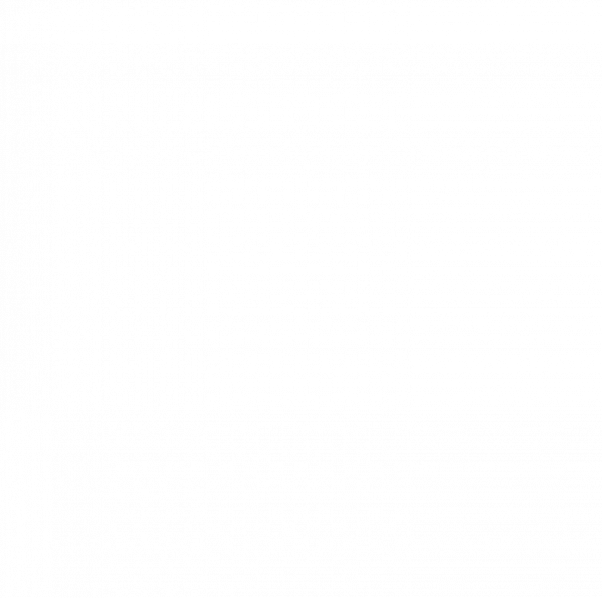 Stress-Echokardiographie